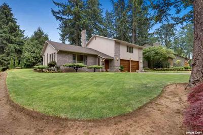 Salem Single Family Home For Sale: 4578 Independence Dr