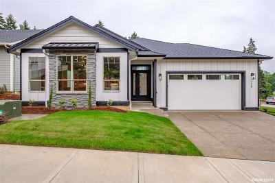Salem Single Family Home For Sale: 120 Summit View St