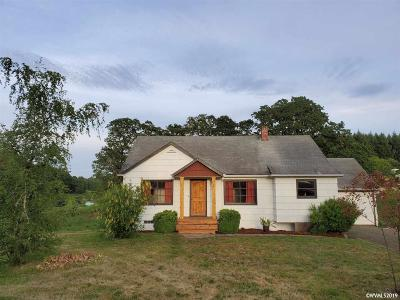 Dallas Single Family Home For Sale: 380 N Kings Valley Hwy