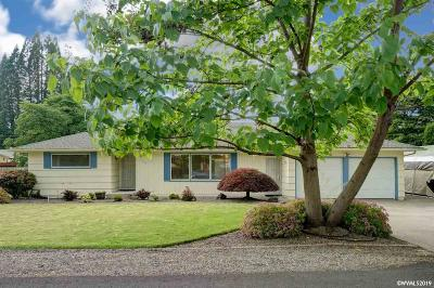 Keizer Single Family Home For Sale: 1169 Greenwood Dr
