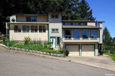Salem Single Family Home For Sale: 348 Hosanna Ct