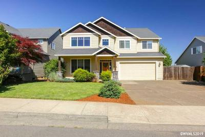 Salem Single Family Home For Sale: 880 Feather Sky St