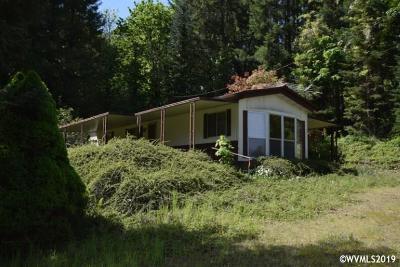 Salem Manufactured Home For Sale: 12055 Oak Rd