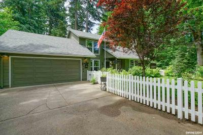 Albany Single Family Home For Sale: 266 Quarry Rd
