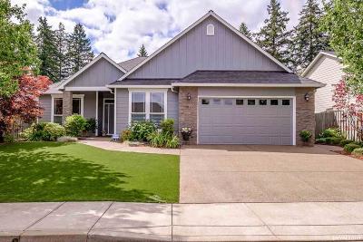 Salem Single Family Home For Sale: 284 Mountain Vista Av