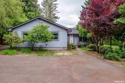 Sweet Home Single Family Home For Sale: 45845 Sunnyside Dr