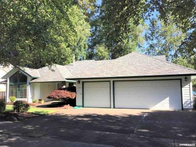 Salem Single Family Home For Sale: 535 Valleywood Dr