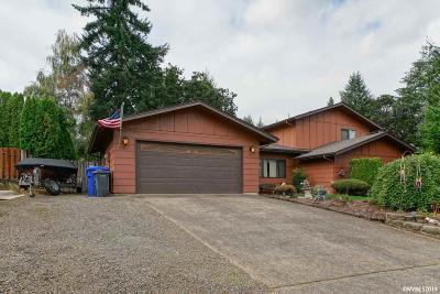 Salem Single Family Home For Sale: 3565 Jana Av