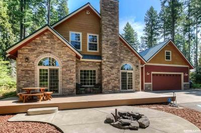 Detroit Single Family Home For Sale: 280 Scott Av