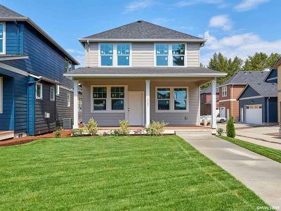 Albany Single Family Home For Sale: 1037 Water Av