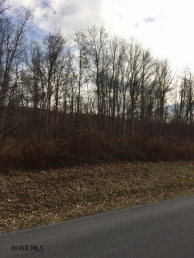 Residential Lots & Land Sold: Off I-99 Access Road
