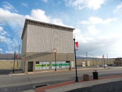 Blair County Commercial For Sale: 630 N 4th Avenue