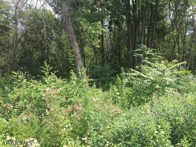 Blair County Residential Lots & Land For Sale: 812-818 E Bell Avenue