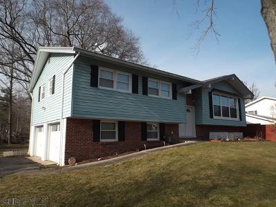 Tyrone Single Family Home For Sale: 574 Oak Lane