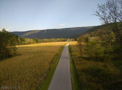 Residential Lots & Land For Sale: 442 Swinging Bridge Land Only
