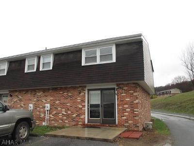 Duncansville Single Family Home For Sale: 311 Beamer Drive