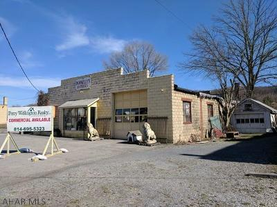 Blair County Commercial For Sale: 1225-130 3rd Ave