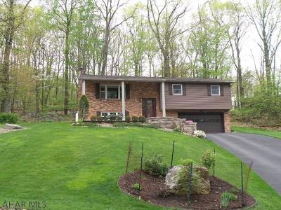 Altoona Single Family Home For Sale: 1017 Lycoming Lane