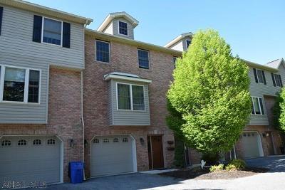 Hollidaysburg Single Family Home For Sale: 155 Sylvan Crest Drive