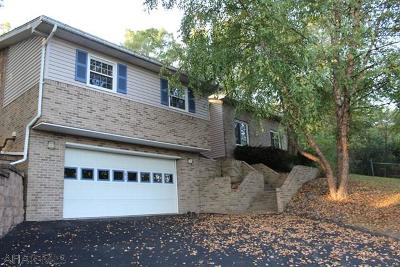 Hollidaysburg Single Family Home For Sale: 62 Circle Dr