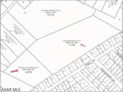 Duncansville PA Residential Lots & Land For Sale: $224,900
