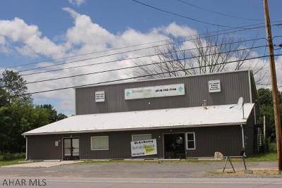 Blair County Commercial For Sale: 3340 East Pleasant Valley Blvd