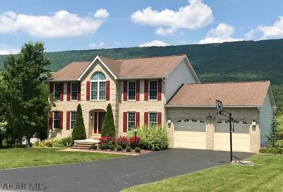 Hollidaysburg Single Family Home For Sale: 172 Clubhouse Drive