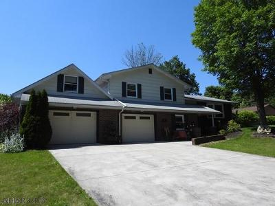 Tyrone Single Family Home For Sale: 425 Ferndale Drive