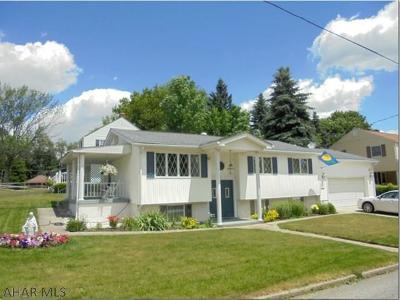 Ebensburg Single Family Home For Sale: 101 Elderwood Drive