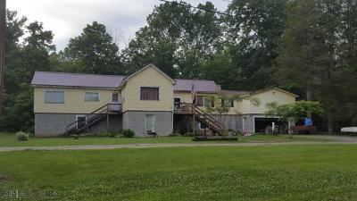 Hollidaysburg Single Family Home For Sale: 1229 Allis Lane