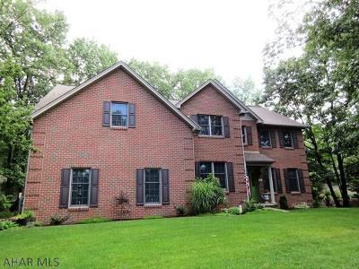 Blair County Single Family Home For Sale: 16 Majestic Circle