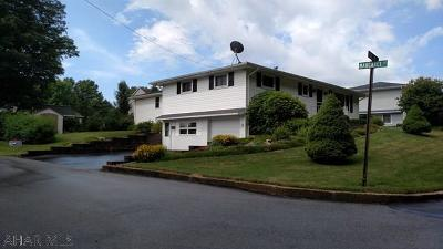 Ebensburg Single Family Home For Sale: 322 Roland Street