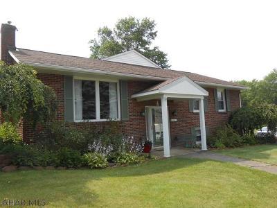 Ebensburg Single Family Home For Sale: 301 Tanner Street