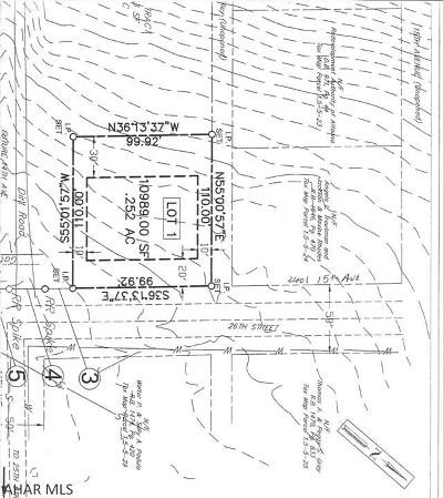 Blair County Residential Lots & Land For Sale: 2600 14th Ave