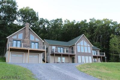 Blair County Single Family Home For Sale: 513 Lock Mountain Road