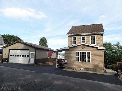 Altoona Single Family Home For Sale: 1117 28th Avenue