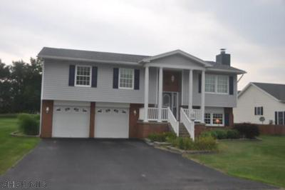 Hollidaysburg Single Family Home For Sale: 17 Michaels Drive