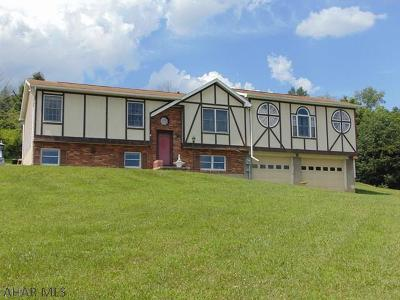 Hollidaysburg, Duncansville Single Family Home For Sale: 505 Turkey Valley