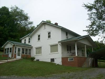 Martinsburg, Roaring Spring, East Freedom, New Enterprise, Woodbury Single Family Home For Sale: 487 Cream Hollow Road