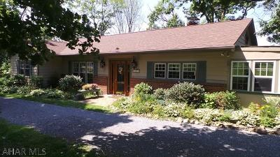 Blair County Single Family Home For Sale: 650 Shand Ave