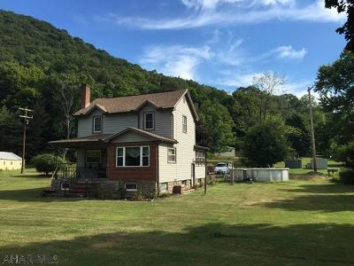 Williamsburg Single Family Home For Sale: 1470 Juniata River Road