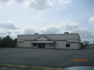 Blair County Commercial For Sale: 1201 E Pleasant Valley Blvd