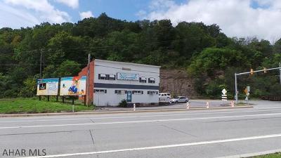 Altoona Commercial For Sale: 110 South Logan Blvd