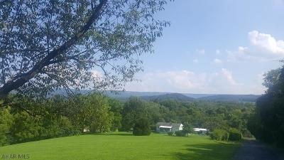 Blair County Residential Lots & Land For Sale: 846 Slate Hill Road