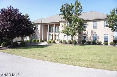 Blair County Single Family Home For Sale: 239 Scenic Pine Drive
