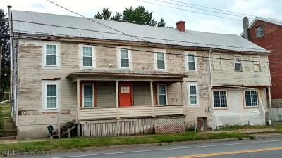 Martinsburg, Roaring Spring, East Freedom, New Enterprise, Woodbury Single Family Home For Sale: 169 Main Street