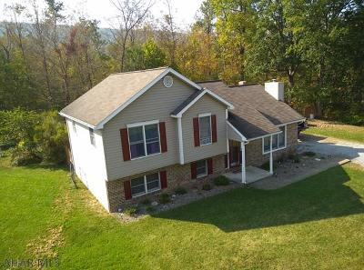 Hollidaysburg, Duncansville Single Family Home For Sale: 610 Shaw Road