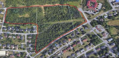 Blair County Residential Lots & Land For Sale: Newry Lane