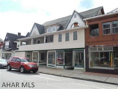 Blair County Commercial For Sale: 304-308 E Main St