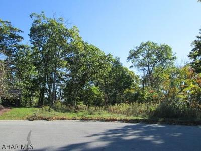 Blair County Residential Lots & Land For Sale: 73 Queens Way